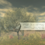 products:p02-ad-raw.png